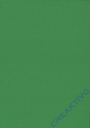 Heyda Tonpapier Din A4 130g/m² laubgrün 100 Blatt