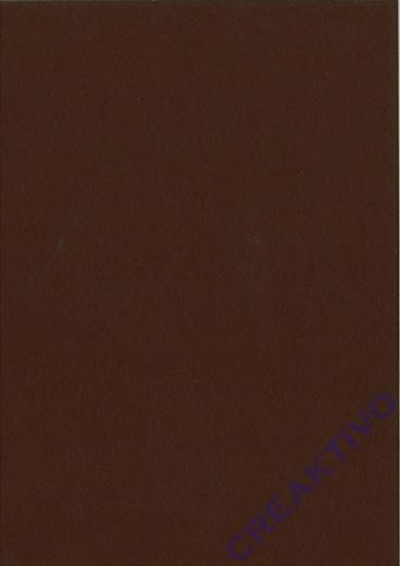 Knorr Bastelfilz Bogen 20x30 150g/m² braun