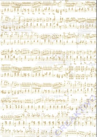 Transparentpapier Noten - weiß/gold