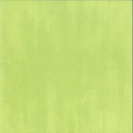 Scrapbookingpapier Double Dot mint