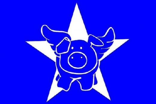 My Style Schablone DIN A5 Star-Pig (Restbestand)