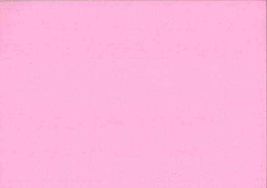 Heyda Universalkarton 220g/qm Bogen 50x70cm rosa