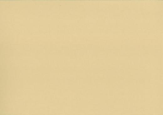 Heyda Fotokarton 50x70 cm 300g/m² chamois