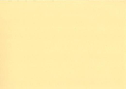 Heyda Fotokarton 50x70 cm 300g/m² beige