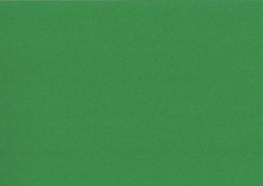 Heyda Tonpapier 50x70 cm 130g/m² laubgrün