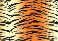 Motiv-Fotokarton 300g/qm 50x70cm Tiger
