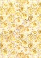 Universalkarton Rosen creme 220g/qm DIN A4 (Restbestand)