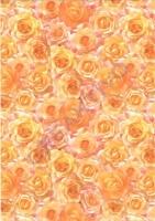 Universalkarton Rosen lachs 220g/qm DIN A4 (Restbestand)
