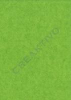 Pergamin Transparentpapier 70x100cm hellgrün