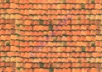 Motiv-Fotokarton 300g/qm 49,5x68cm Dachziegel