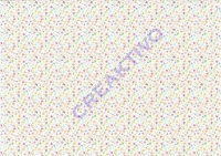 Motiv-Fotokarton 300g/qm 49,5x68cm Tiny 07 - Schmetterlinge