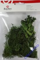 Islandmoos grün