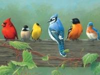 Malen nach Zahlen - Vögel auf Balken