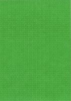 Pünktchen-Fotokarton DIN A4 grün