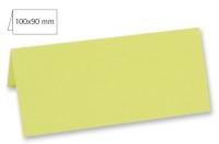 Tischkarte doppelt 100x90mm 220g pastellgrün