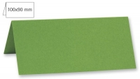 Tischkarte doppelt 100x90mm 220g immergrün