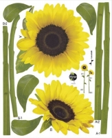 Decor-Wand-Sticker Sonnenblume (Einzelstück - reduziert)