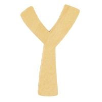 Holz-Buchstabe 6cm Y