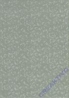 Bastelkarton Roma geprägt DIN A4 silber