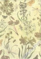 Fotokarton A4 - Libellen geprägt (Restbestand)