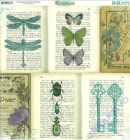 Scrapbooking Papier Enchanted Garden - Periodical (Restbestand)