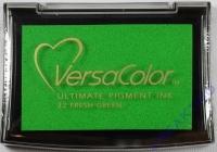 Pigment-Stempelkissen grün