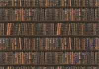 Motiv-Fotokarton 300g/qm 49,5x68cm Bibliothek