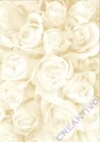 Bastelkarton Starlight Hochzeit - Rosen creme/gold