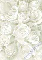Bastelkarton Starlight Hochzeit - Rosen weiß/silber