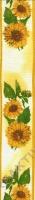 Taftband Sonnenblumen 40mm mit Drahtkante - Meterware (Restbestand)
