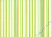 Bastelkarton Linus 300g/qm 50x70cm grün