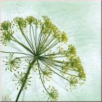 Tissue Servietten 33 x 33 cm Blume (Restbestand)