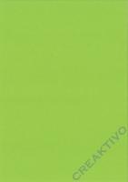 Heyda Fotokarton DIN A4 300g/m² maigrün