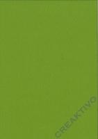 Bastelfilz Bogen 20x30 1mm lindgrün