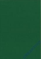 Bastelfilz Bogen 20x30 1mm grasgrün