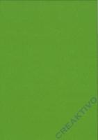 Bastelfilz Bogen 20x30 1mm maigrün