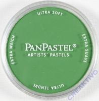 PanPastel Ultra Soft Künstler Pastellfarbe im Napf - perm green shade