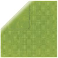 Scrapbookingpapier Double Dot apfelgrün