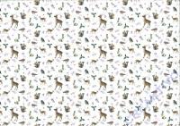 Motiv-Fotokarton 300g/qm 49,5x68cm Wintertraum Motiv 03