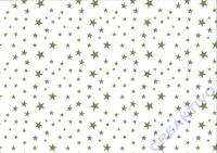 Sternchen-Fotokarton 300g/qm 49,5x68cm hochweiß