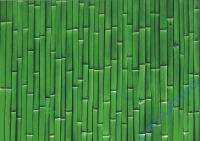 Motiv-Fotokarton 300g/qm 49,5x68cm Bambus