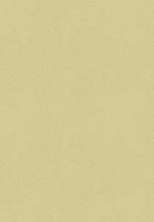 Heyda Universalkarton 220g/qm Bogen 45x65cm gold