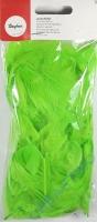Deko-Federn 5-10cm 5g hellgrün