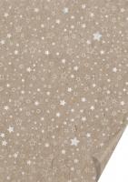 Naturkarton 50 x 70cm Sterne silber