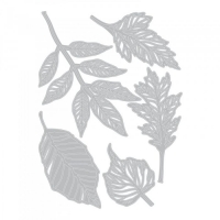 Sizzix Thinlits Die Set 5PK - Skeleton Leaves