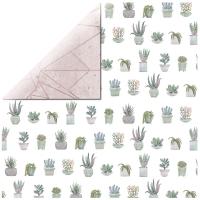 Scrapbooking Papier Greenhouse - Aloe