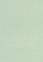 Glitterkarton A4 hellgrün irisierend