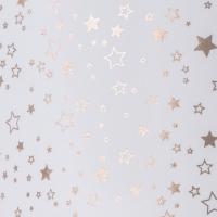 Transparentpapier Sternenglanz Rolle 50 x 70 cm - Motiv C Sterne roségold