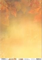 Studio Light Basic Hintergrundpapier A4 Wonderful Autumn Nr. 328