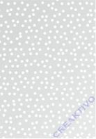 Transparentpapier 50x70cm Punkte